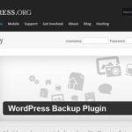 12 Tipps für die WordPress Plugin Programmierung