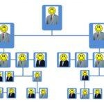 Wie Sie Managementstrukturen und Prozesse aufbauen können