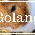 Vorteile und Nachteile von Golang: Go die Google Programmiersprache
